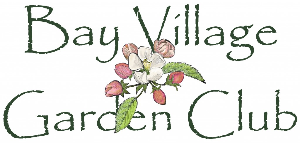 Bay Village Garden Club logo BVGC Logo Stacked MASTER copy