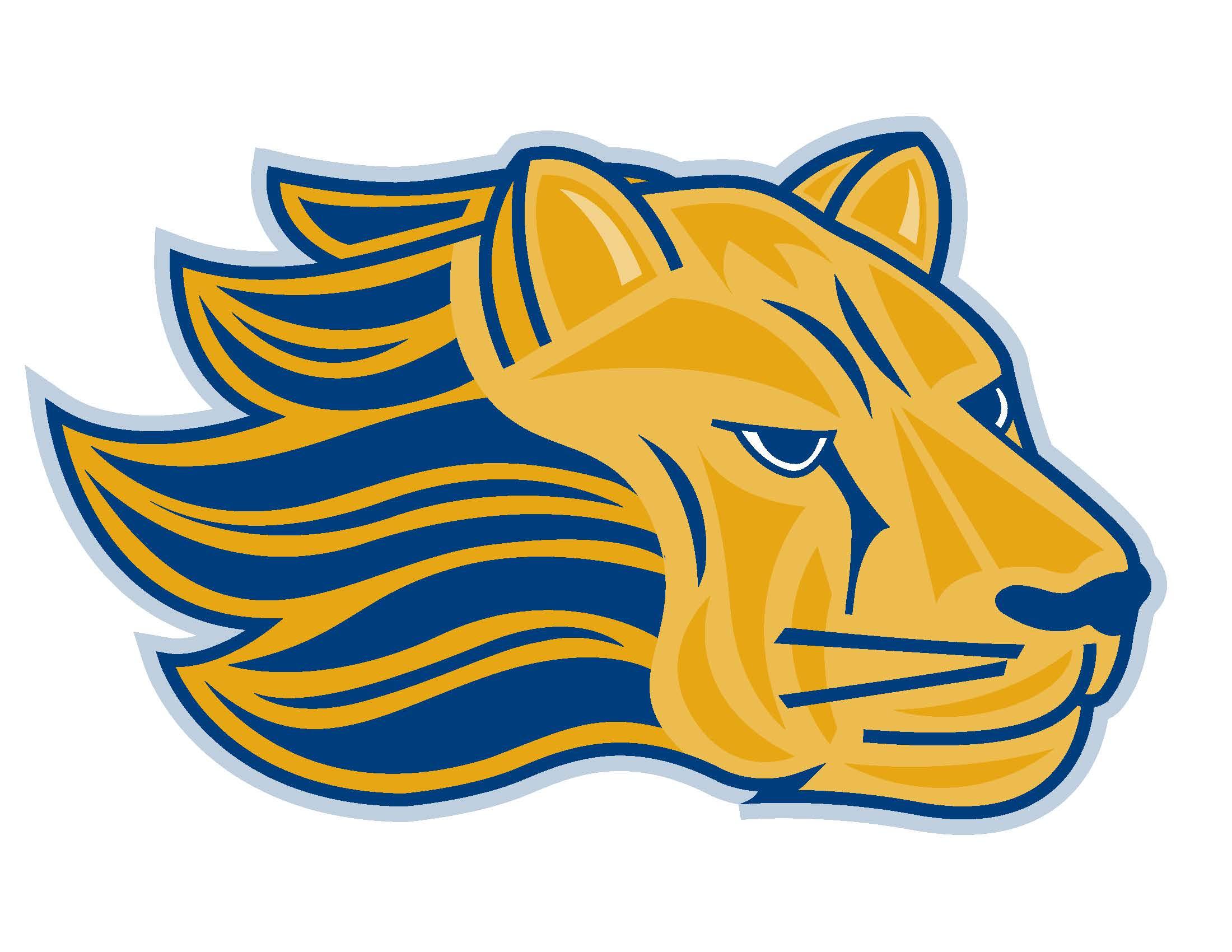 Final Mascot Lion 2013