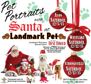 11-12-15 Landmark Pet Portraits