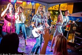 Party for a Cause at the 2017 Sunflower Wine Festival