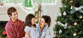 Cahoon Nursery & Garden Center