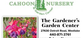 Cahoon Nursery – The Gardener's Garden Center