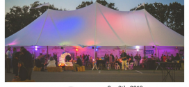 PARTY OF THE YEAR! BAYarts Moondance 2018 is on September 8