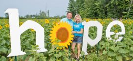 Prayers from Maria Welcomes Two Sunflower Fields Soon!