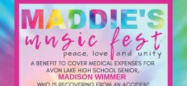 Music Fest & Fundraiser on the Lake to Assist Avon Lake Family