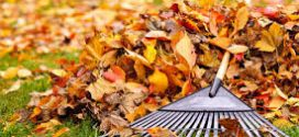 Fairview Park Leaf Collection to Begin Week of October 22