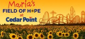 Maria's Field of Hope at Cedar Point is ready to BLOOM!