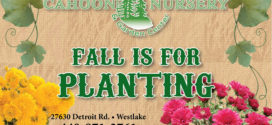 Cahoon Nursery: Fall is for Planting