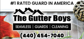 The Gutter Boys: End Gutter Cleaning