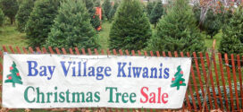 Bay Kiwanis Christmas Tree Sale